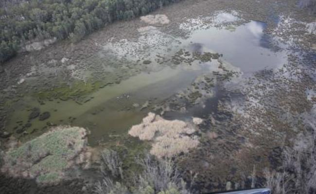 Flooding in Australian Wetlands