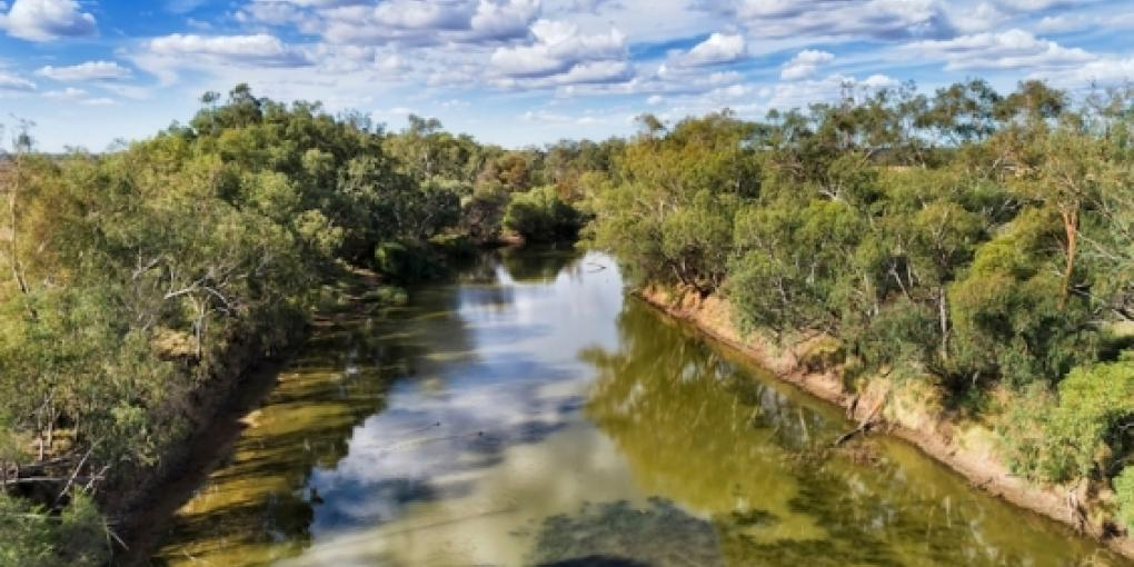 The Gwydir River - part of the Murray Darling Basin